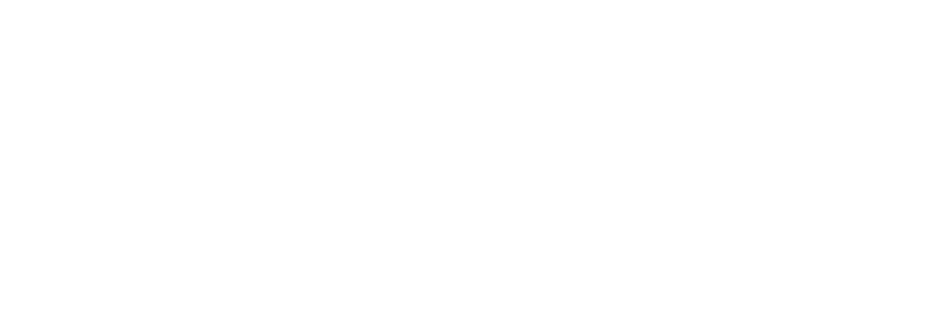 Faces of Relativity logo